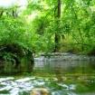 Ловеч - Крушунските водопади - Деветашката пещера
